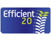Efficient 20