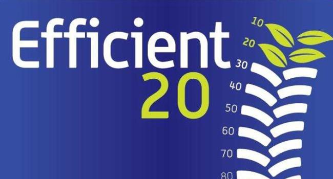 Efficient20